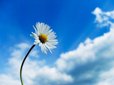 「気功」とは「気」を操作して生命活動を維持することです。